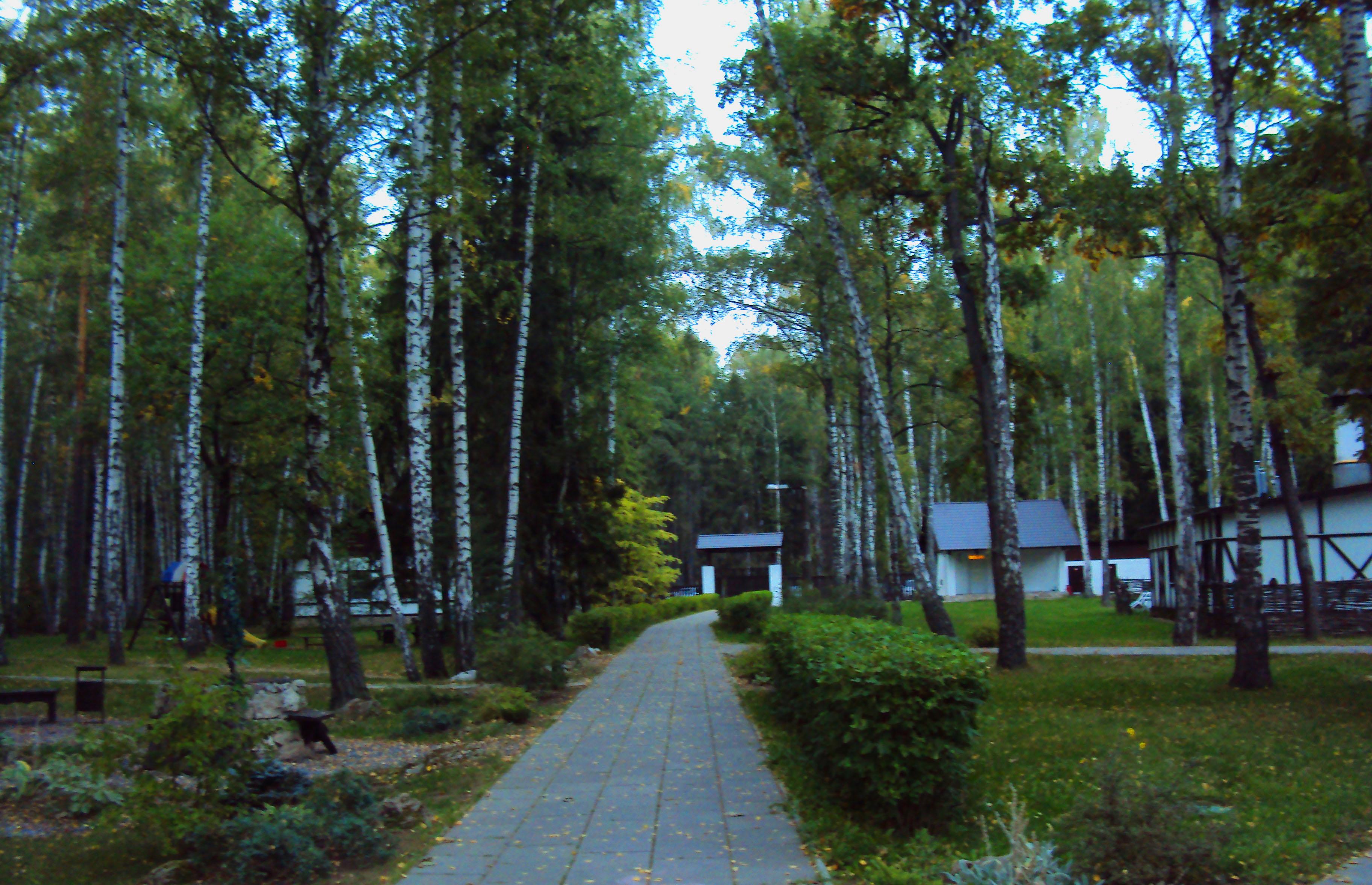 Парк рядом с гостиным домом